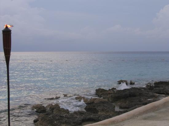 Presidente Inter-Continental Cozumel Resort & Spa : View from dinner