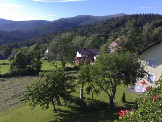 Pension Draxlerhof: Looking down at the garden (taken July 2007)