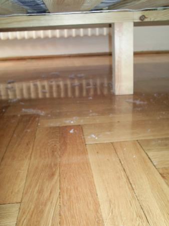 Rila Hotel: dust under the bed