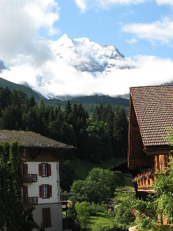 Hotel Edelweiss: View from balcony