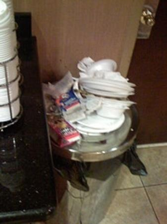 Hampton Inn Philadelphia / Willow Grove : Please empty the garbage more often!