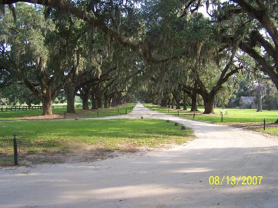 Mount Pleasant, SC: Leaving Boone Hall
