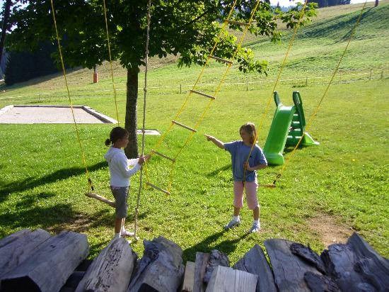 Chalet-Hotel Crychar : Swings