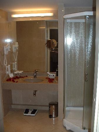 Holiday Inn Vilnius: Suite Bathroom Shower
