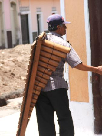 Granada, Nicaragua: musician