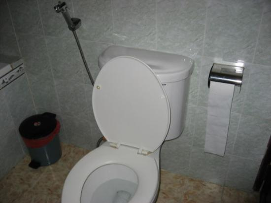 Phi Vu Hotel: toilet with wash your bottum thingy