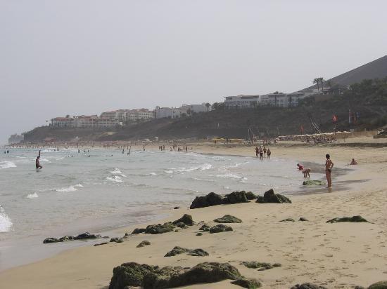 show user reviews melia gorriones fuerteventura pajara jandia peninsula canary island