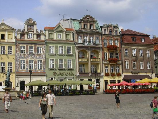 Brovaria: Rynek