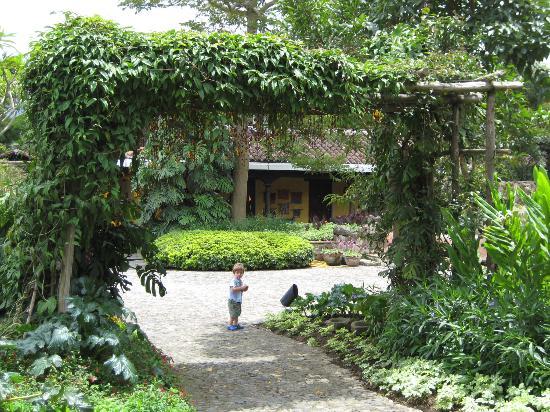 Quinta de las Flores : The Gardens