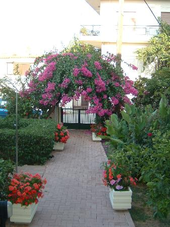 Lefka Apartments: Garden Lefka