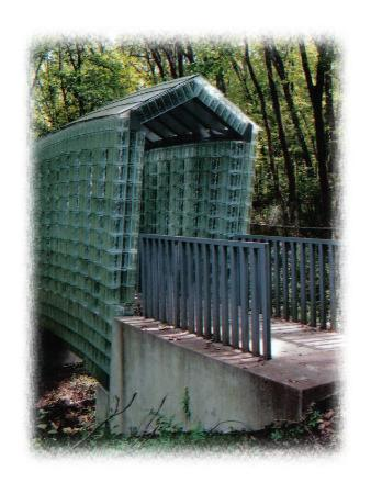 Cheekwood Botanical Gardens & Museum of Art: Glass Bridge