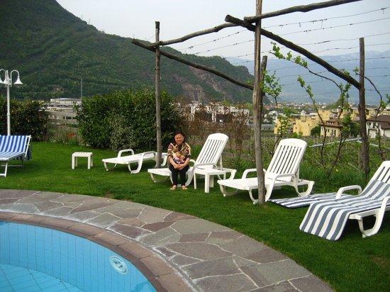 Magdalener Hof: Hotel poolside overlooking vineyards