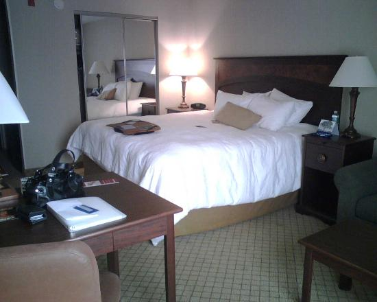 Hampton Inn Baltimore - Washington International Airport: Alternate view from desk - you can see closet with mirrored doors!