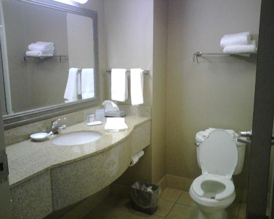 Hampton Inn Baltimore - Washington International Airport: a look into the washroom