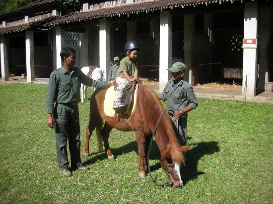 Tiger Tops Tharu Lodge: the horse rides