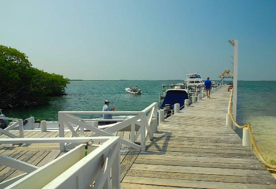 Turneffe Island Resort: Boat dock from dive shop