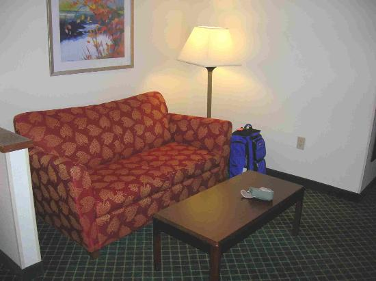Fairfield Inn Tuscaloosa: New Sleeper Sofa