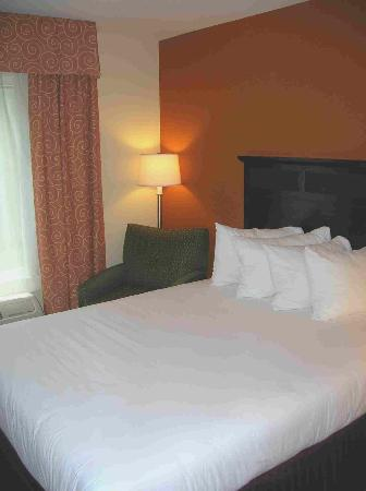 Holiday Inn Express Hotel & Suites Chattanooga-Hixson: Our Room
