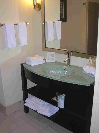 Holiday Inn Express & Suites Chattanooga-Hixson: Great Bathroom