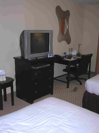 Holiday Inn Express & Suites Chattanooga-Hixson: Flat Screen TV