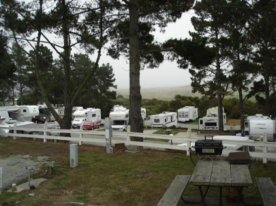 Pelican Point RV Park: General View 1
