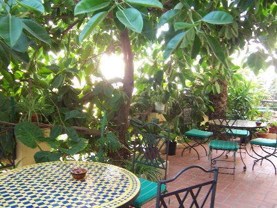 Hostal Valencia: the outdoor sitting area