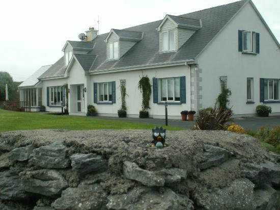 Pairc Lodge B & B: The Lodge