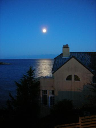 Rosemary Inn: Moon over the water