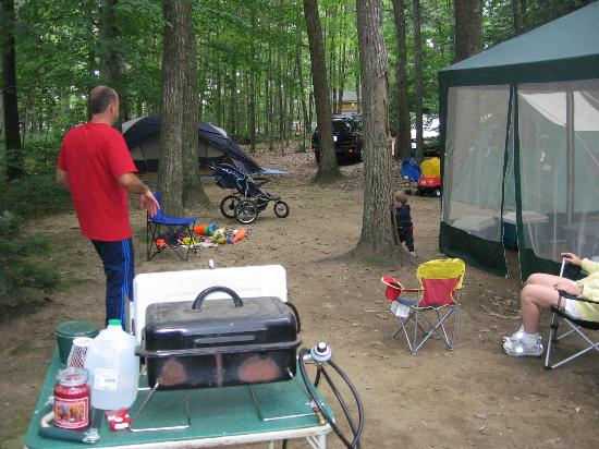 Pinederosa Camping Area: this isn't even the entire site!