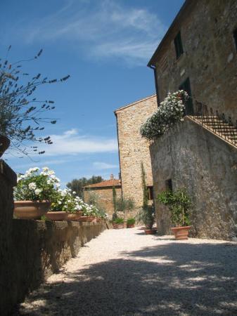 Palazzo Brandano: Back Terrace