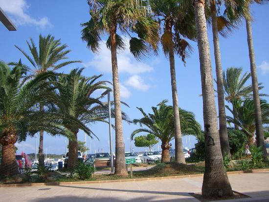 Aparthotel & Hotel Isla de Cabrera: die Strandpromenade