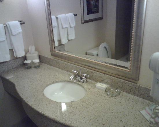 Hilton Garden Inn Chattanooga / Hamilton Place: Bathroom