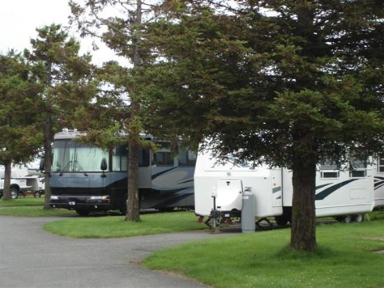Mad River Rapids RV Park : General View of Wall Street