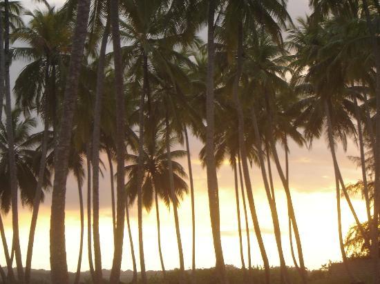 Casa Marina Playa Escondida: Another Sunset