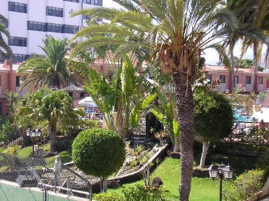 The gardens picture of jardin del sol apartments playa for Bungalows jardin del sol playa del ingles