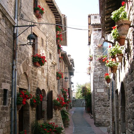 Assisi, Italië: Red geraniums hail the advent of spring