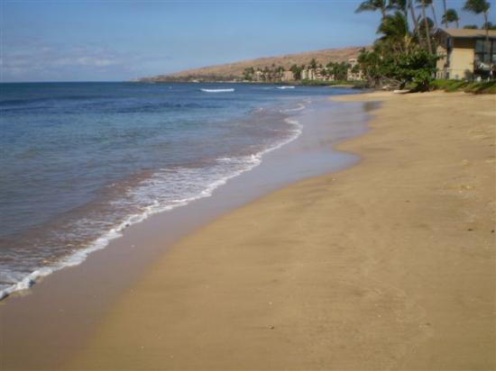 Milowai Resort: Haycraft Beach - a short walk from your condo down a quiet road!