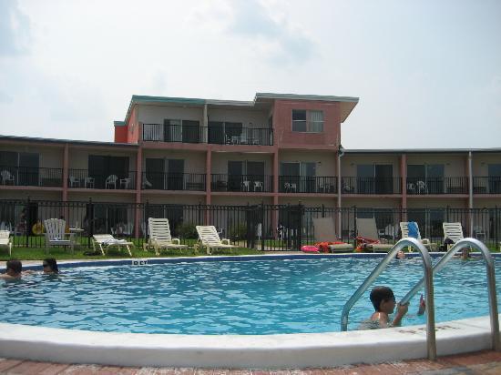 Seahorse Oceanfront Inn: Pool View