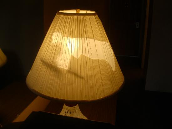 Indian Hills Inn : Torn lampshade