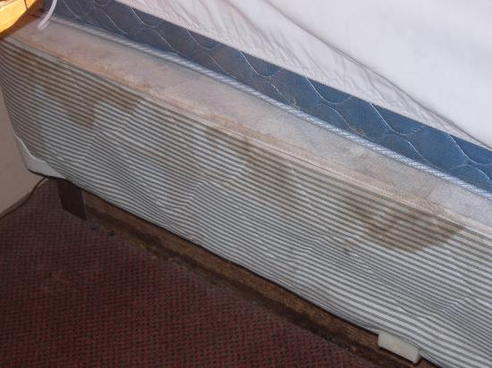 Indian Hills Inn: Human fluid stains on bedsprings... blood, sweat, ewwww?!?!?