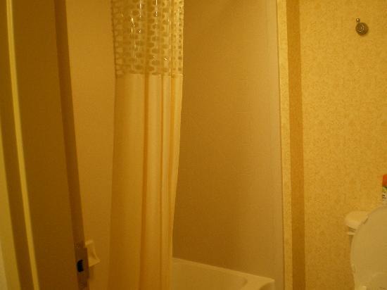 Hampton Inn & Suites Wells-Ogunquit : Bathroom