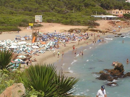 Fiesta Hotel Cala Nova: View of beach