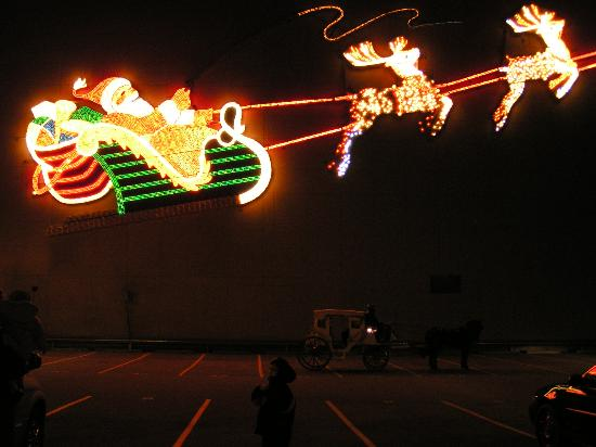 Downtown Santa Reindeer Lights Picture Of Fort Wayne