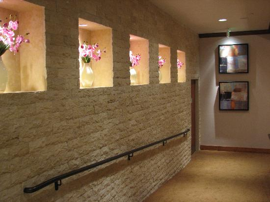 Embassy Suites by Hilton Fort Worth Downtown: Walkway to Elevators