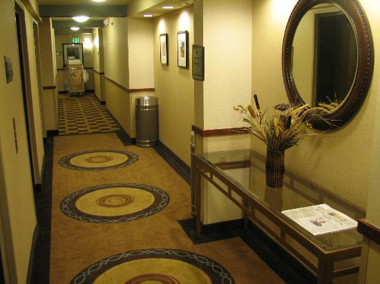Embassy Suites by Hilton Fort Worth Downtown: Hallway