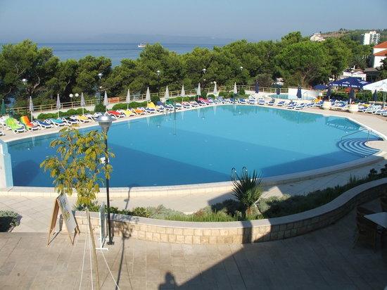 Bluesun Resort Afrodita : Early morning view of pool