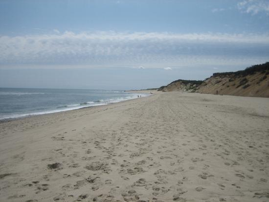 View Of The Coast Guard Beach Picture Eastham Tripadvisor
