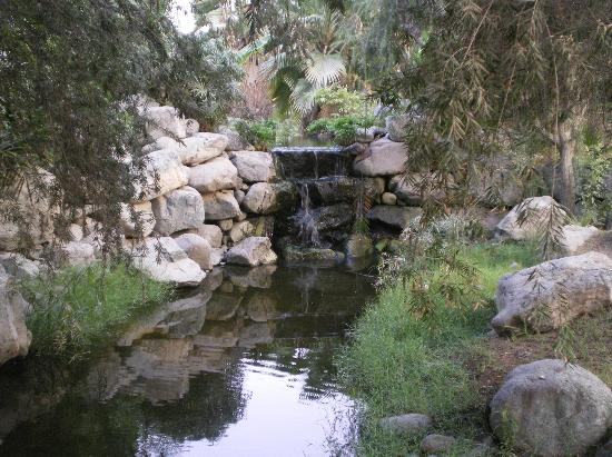 JA Palm Tree Court : Jardins 2