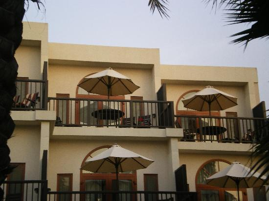 JA Palm Tree Court : Terrasse
