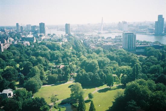 Rotterdam, Países Bajos: Nice view